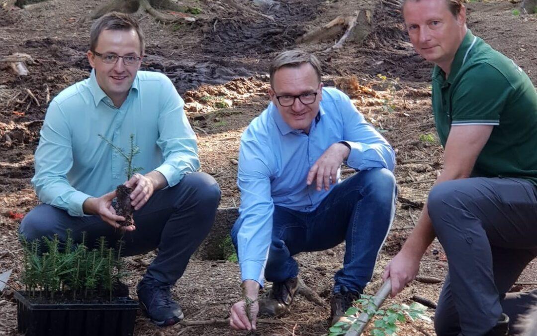 Baumpflanzaktion im Auer Stadtwald